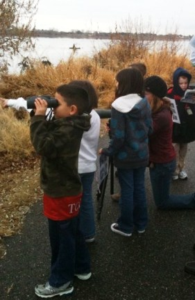 Junior Audubon activity